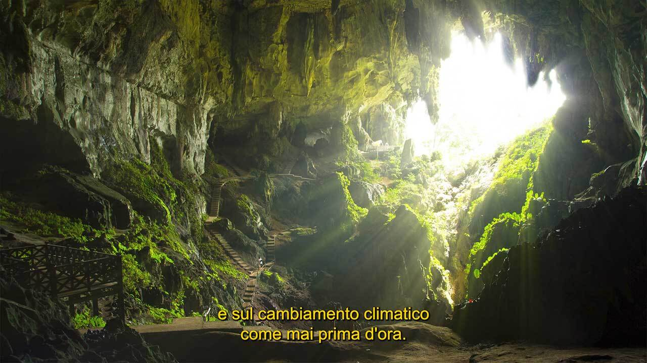 Voquent Subtitling Styles