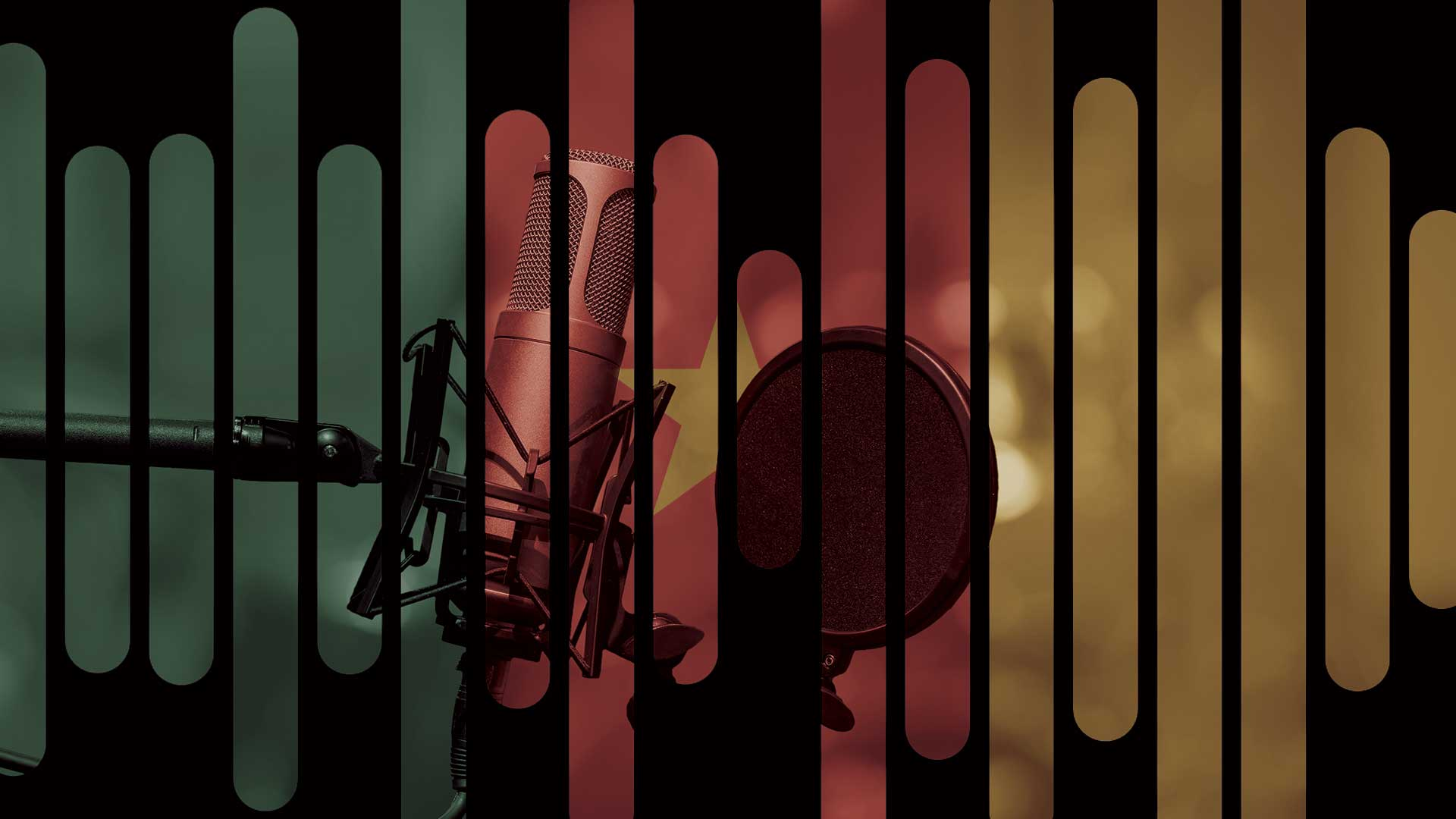 Voice-Over Services Cameroon - Voquent